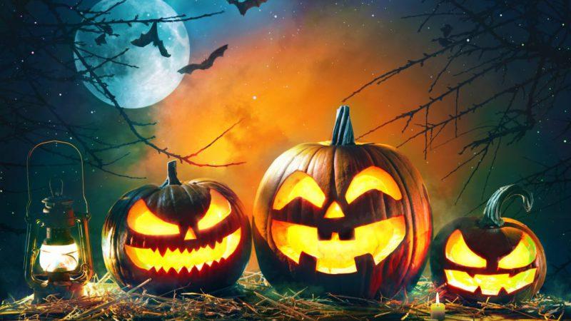 Top 10 Cutest Halloween Decorations